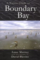 A Nature Guide to Boundary Bay, by Anne Murray