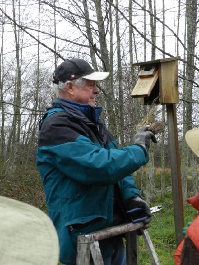 Ken empties nesting box with baffle