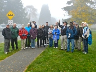 A foggy morning at QE Park