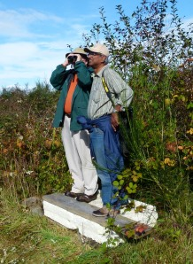 Vertically Challenged Birders