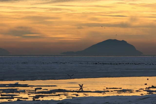 Sunrise on Boundary Bay (TC)