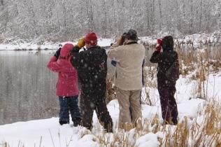 At Surrey Lake (TC)
