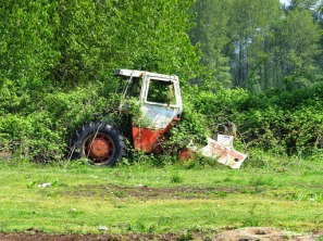 abandoned tractor (BD)