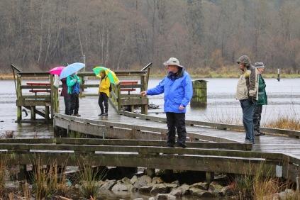 DNCB at Burnaby Lake (TC)