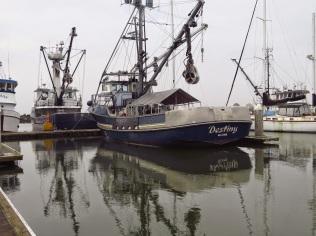 Blaine Harbor (BD)