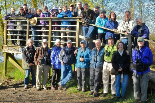 DNCB at Ladner Harbour Park (KB) click on photo to see large version