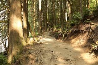 path at Buntzen Lake (P&A)