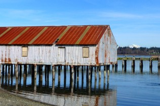 old Semiahmoo cannery (MS)
