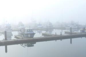 Blaine Marina in the fog (MS)