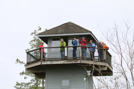 DNCB on Tennant tower (TC)