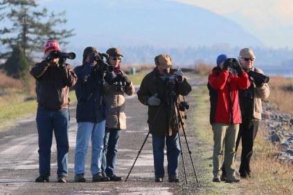 birders on the dike (TC)