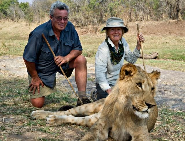 David_Diane_Reesor_lion.jpg